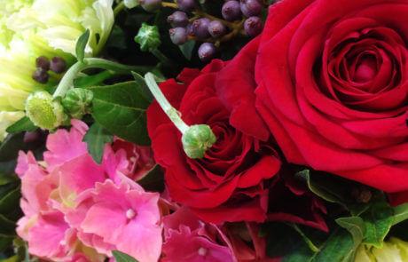 Närbild på snittblommor. I den här buketten finns det röda rosor, rosa hortensia, metallicblå viburnumbär och limegröna nejlikor.