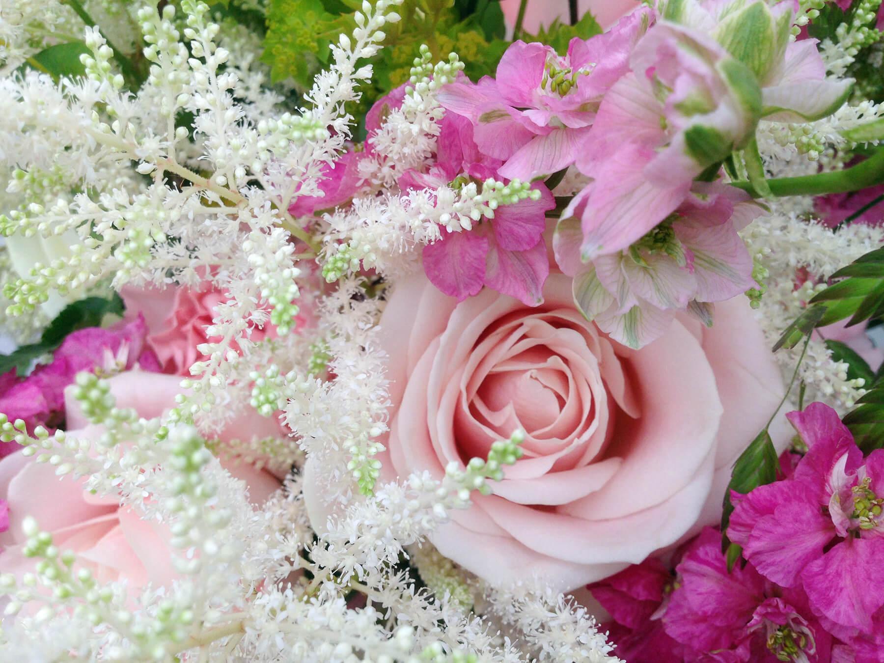 Närbild på rosa rosor, vit astilbe och rosa riddarsporre. Så somrigt och härligt!