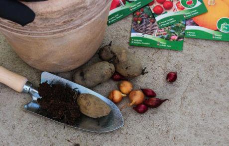 Bli din egen bonde! Odla mera. Sätt potatis och lök, så tomater, pumpa och paprika. Hos oss hittar du trädgårdsredskap, handskar och jord mm.