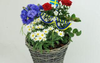 Sommarblommor. Plantering i blått, vitt, gult och rött med en midsommarstång. Passar bra till Midsommar. Svenska flaggan Sverigeflagga Blommorna är: margerit, blåklint och krukros.