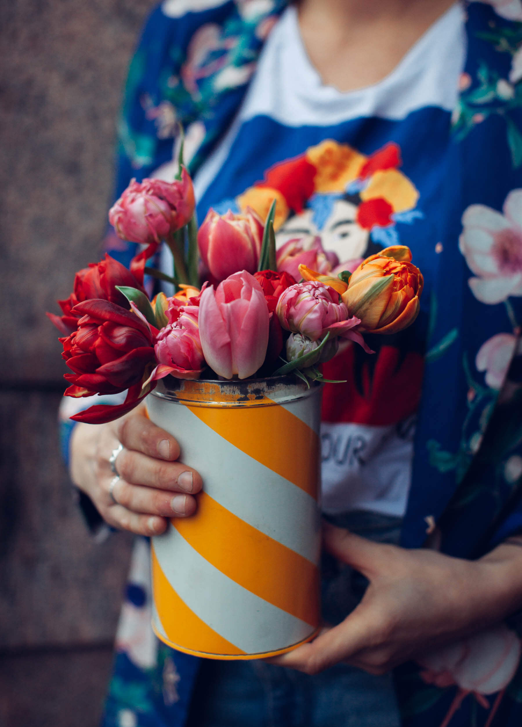 Tulpaner Tulpanlycka Blomsterfrämjandet, My Feldt