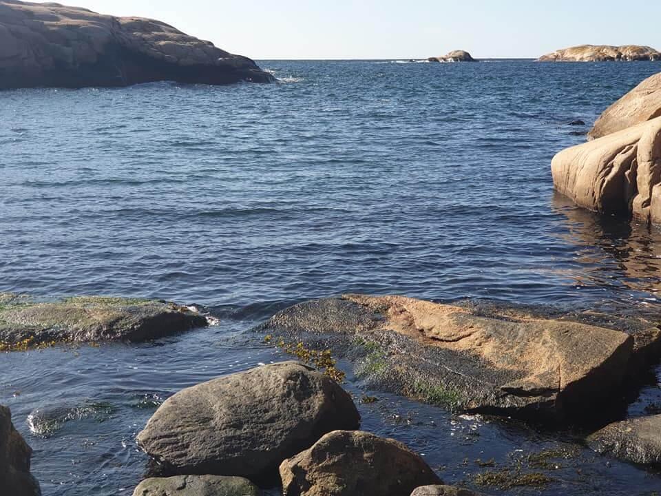 Pelagiska städar upp plasten från öarna i Bohusläns skärgård.